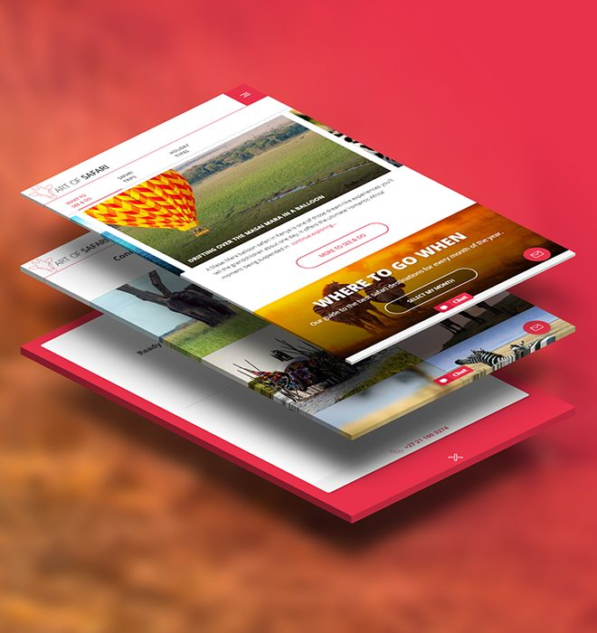 Art of Safari portfolio stack